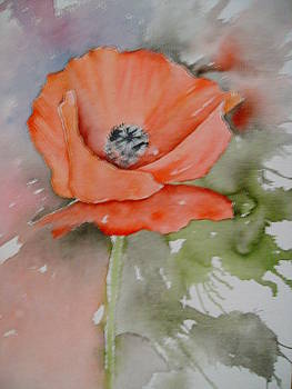 Ink poppy by Dion Halliday