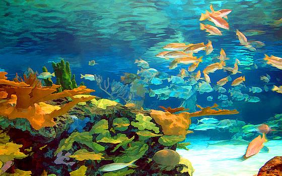 Sam Davis Johnson - Inland Reef