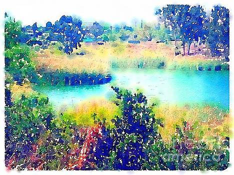 Inlet Cove at Lake Murray San Diego California by John Castell