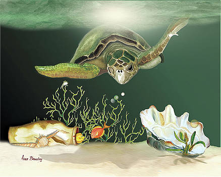 Inquisitive Turtle by Anne Beverley-Stamps