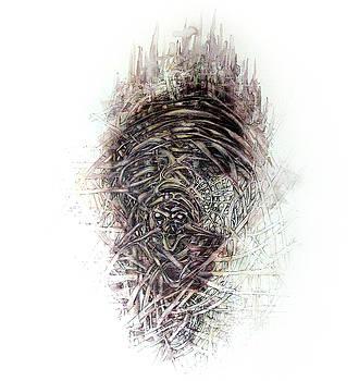 Inside 2 by Paula V Puian