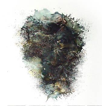 Inside 5 by Paula V Puian