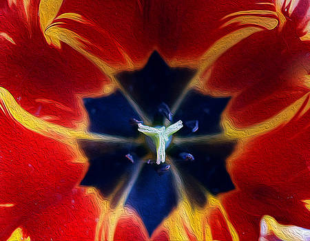 Inside one tulip... by Nataly Rubeo