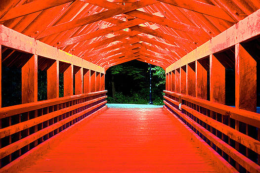 Inside Rebagliati Park Bridge at Night by Frank Feliciano