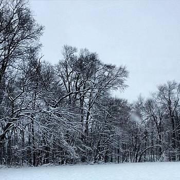 #instaprints #snow #burbs by Jamie Brown