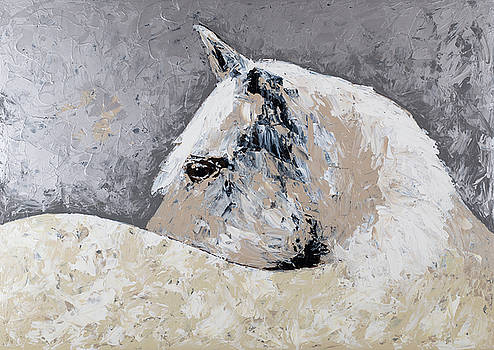 Intense Horse by Megan Morris Collection