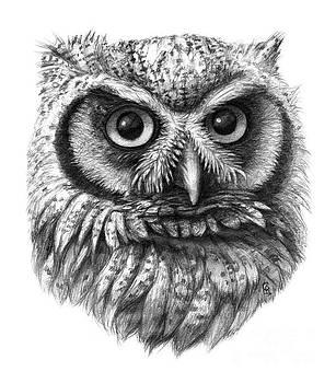 Intense Owl G137 by Svetlana Ledneva-Schukina