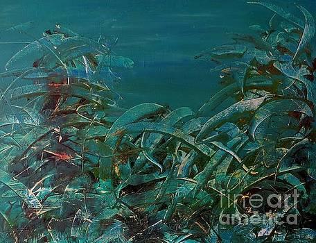 Internal marina seaweed by Lalo Gutierrez