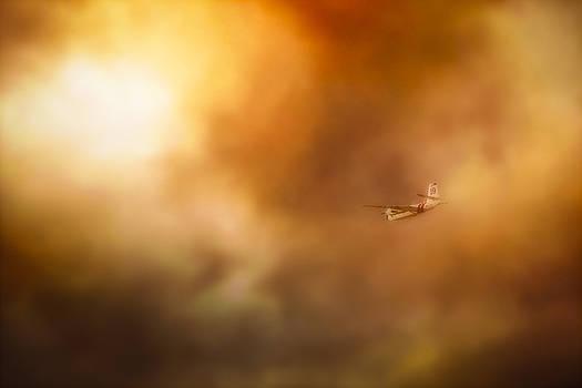 Into Hell by John Hamlon