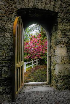 Into Irish Spring by James Truett