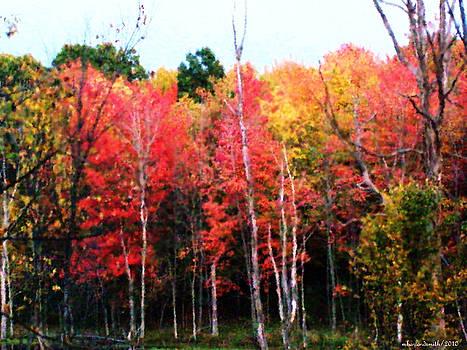 Michelle  BarlondSmith - Into the Forest Impression
