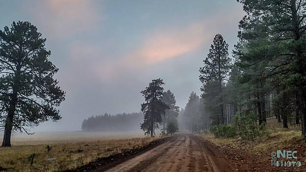 Into the Haze by Niko Lancaster