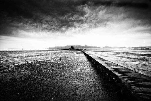 Into The Landscape by Martin Bennie