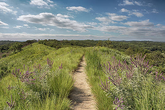 Susan Rissi Tregoning - Into the Loess Hills