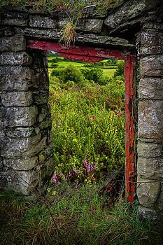 Into the Magical Irish Countryside by James Truett