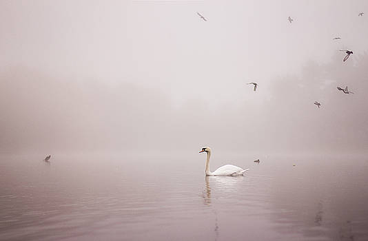 Into the Mists by Arianna Petrovan