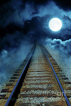 Into the Night by Inspirational Photo Creations Audrey Woods
