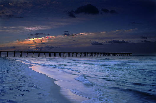 Into the Night by Renee Hardison