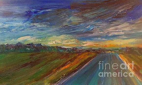 Into the Storm by Susan Abell