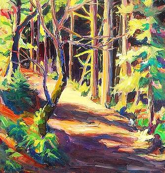 Into the Woods by Margaret  Plumb