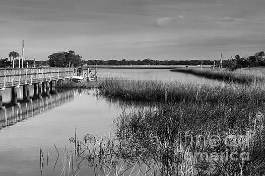Intracoastal View by Diane Macdonald