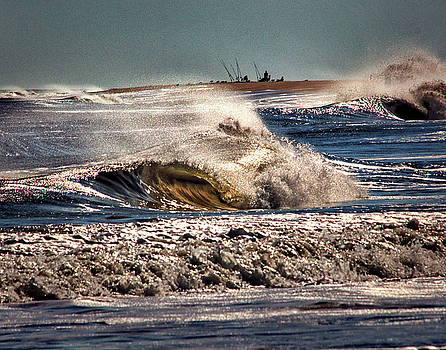 Intrepid Surf Fishing at Delaware Seashore State Park by Bill Swartwout Fine Art Photography
