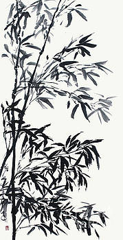 Nadja Van Ghelue - Invigorated Bamboo After The Rain