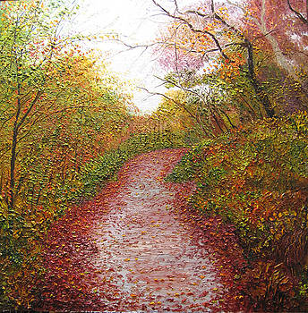 Inviting pathway by Atousa Foroohary