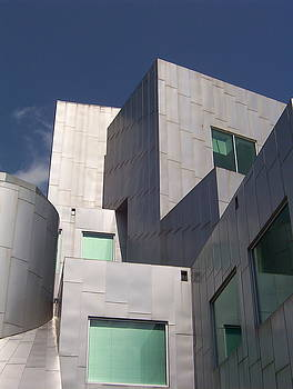 Iowa Gehry 4 by Adam Schwartz