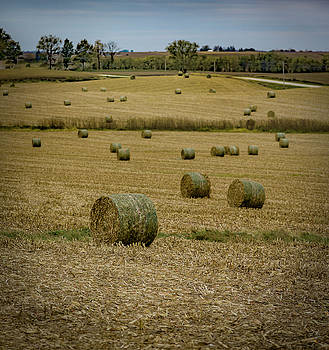 Iowa Hayscape by Ray Congrove