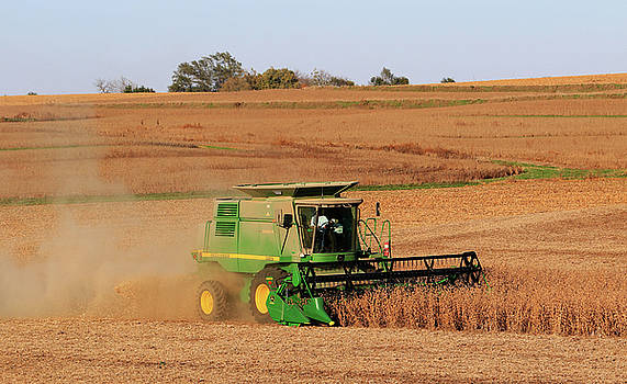 Iowa Soybean Harvest Page County by J Laughlin