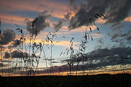 Iowa Sunset by Steve  Yezek