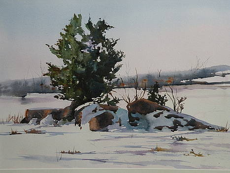 Ipswich Marsh in Winter by Marion Hall