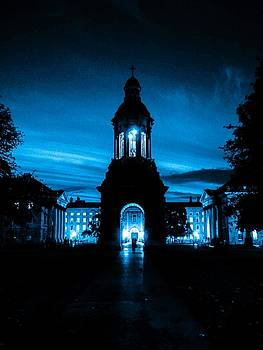 Ireland Blue Trinity College by James Fitzpatrick