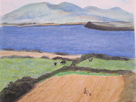 Ireland by Ida Brown