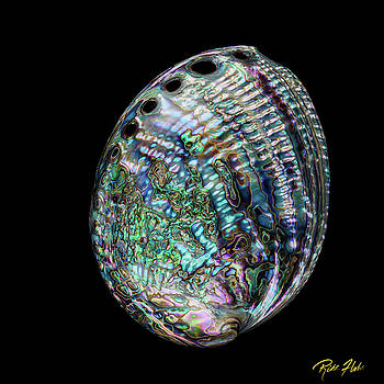 Iridescence on the Half-shell by Rikk Flohr