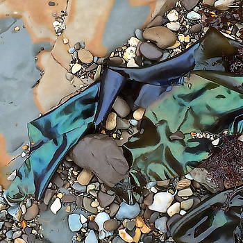 Art Block Collections - Iridescent Seaweed