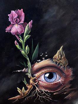 Iris, Allergies  by Kay Walker