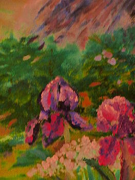 Iris At Rainbow's End by Debi K Baughman