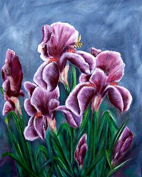 Iris Awakens by Penny Everhart