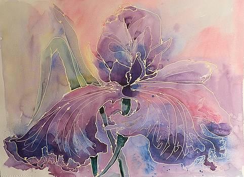 Iris Ballet by Jann Elwood