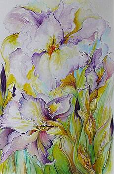 Iris Delight by Barbara Anna Cichocka