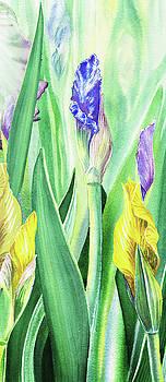 Iris Flowers Olympic Torches by Irina Sztukowski
