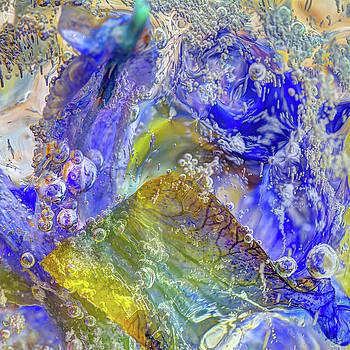 Iris Frozen by Jerri Moon Cantone