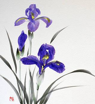 Fumiyo Yoshikawa - Iris