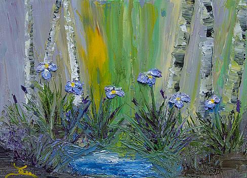 Dee Carpenter - Iris Garden