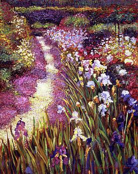 Iris Garden Path by David Lloyd Glover