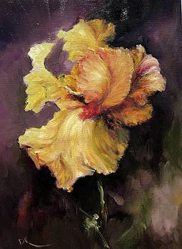 Iris Gold by Diane Kraudelt