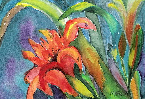 Iris Growing Wild by Marsha Woods