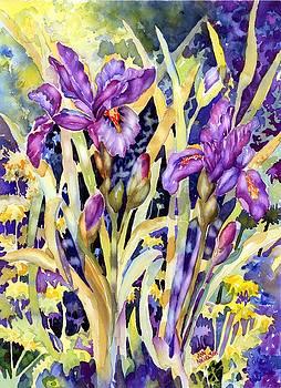 Iris I by Ann Nicholson